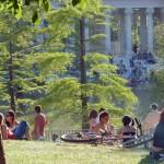 Un picnic en El Retiro