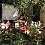 150x150.Ciclo Cine Casa Lope de Vega. Jaime Villanueva016
