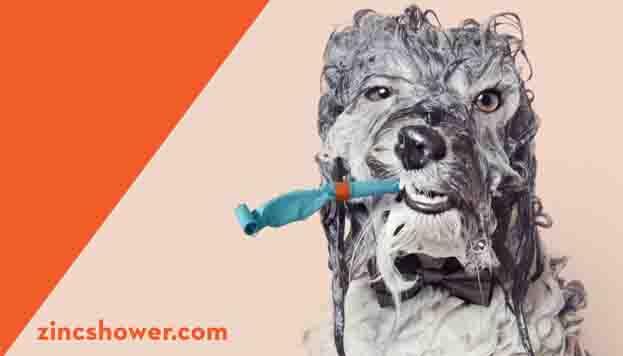 Esta nueva edición de Zinc Shower se celebra los días 8 y 9 de mayo en Matadero Madrid.