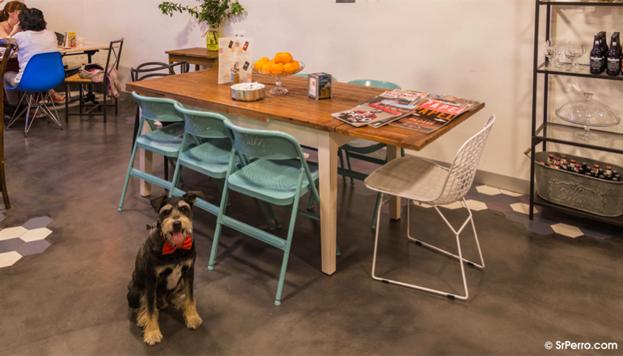 Café de la Rivière (© SrPerro.com)
