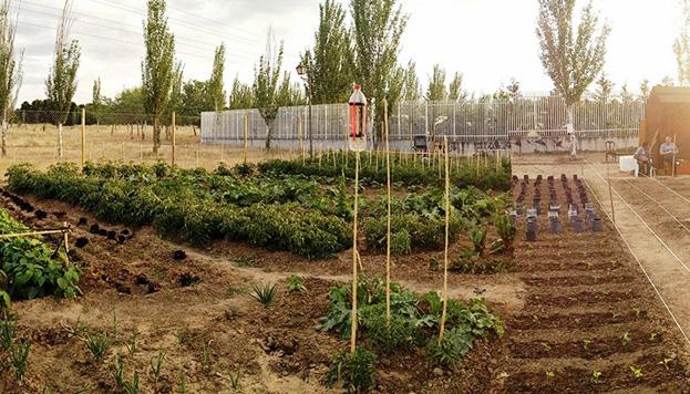 Huertos Urbanos Comunitarios de Madrid