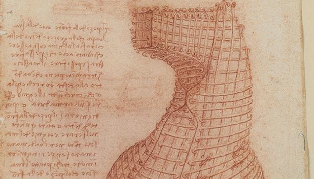 Protección metálica de la cabeza del caballo Sforza en Codex Madrid II, Leonardo da Vinci, XV-XVI. MSS/8936, BNE