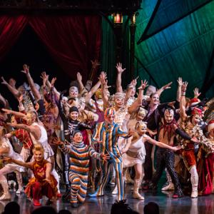 El fascinante Cirque du Soleil