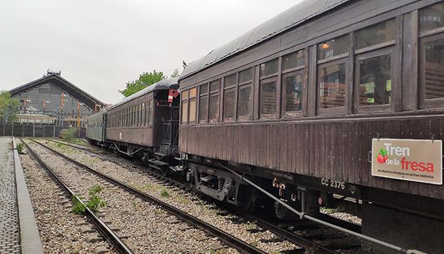El Tren de la Fresa sale desde el Museo del Ferrocarril rubo a Aranjuez.