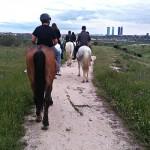 J'ai testé pour vous…Madrid à cheval !